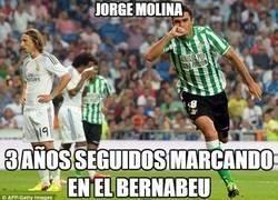 Enlace a Jorge Molina