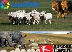 Enlace a La competitividad de las 3 grandes ligas europeas