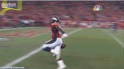 Enlace a GIF: Falla el touchdown por celebrarlo antes de tiempo