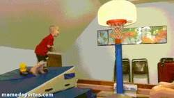 Enlace a GIF: Sabes que tu hijo no será Jordan cuando...