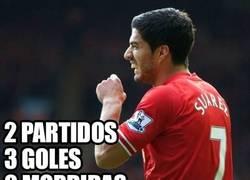 Enlace a Buen regreso de Suárez