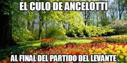 Enlace a El culo de Ancelotti
