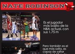 Enlace a Una leyenda viva: Nate robinson