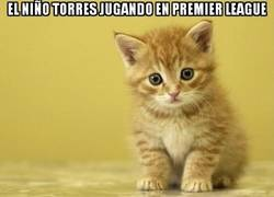 Enlace a Parece que a Torres le viene bien la Champions