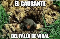 Enlace a El causante del fallo de Vidal