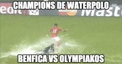 Enlace a Nada mejor que ver un partido de Champions de waterpolo