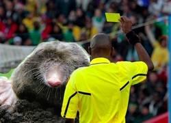Enlace a Amarilla por la escalofriante entrada a Arturo Vidal