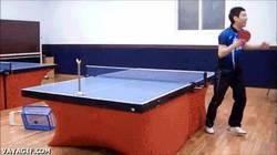 Enlace a GIF: Puntería con la bola de ping pong, nivel: maestro de maestros