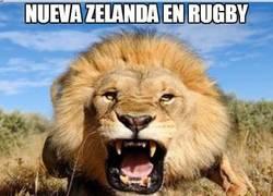 Enlace a Nueva Zelanda en rugby/fútbol