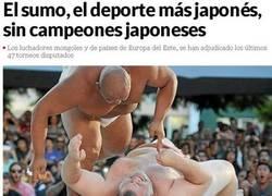 Enlace a El sumo