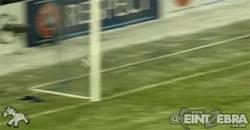 Enlace a GIF: Con este gol, Honda se convirtió en el máximo goleador japonés en Champions