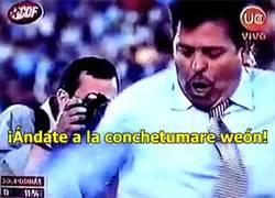 Enlace a GIF: Reacción de los chilenos y costarricenses al ver sus grupos