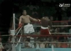 Enlace a GIF: Muhammad Ali quitándose 21 golpes en 10 segundos
