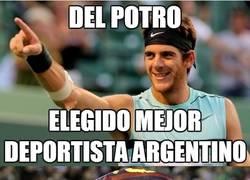 Enlace a Del Potro mejor deportista argentino 2013