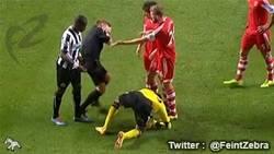 Enlace a GIF: Jugador del Newcastle pega una hostia al árbitro sin querer