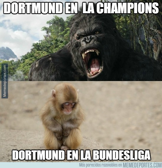 232136 - Borussia Dortmund