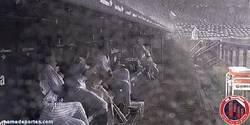 Enlace a GIF: Los Yankees le tienen miedo a los truenos