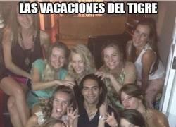 Enlace a Las vacaciones del Tigre