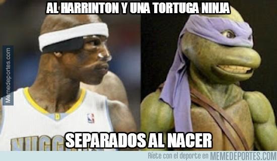 235768 - Al Harrinton y una tortuga ninja