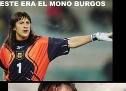 Enlace a ¿Mono Burgos?