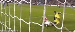 Enlace a GIF: Petr Čech haciendo la gravesinha