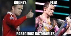 Enlace a Rooney vs Flea