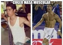 Enlace a Coger masa muscular