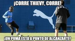 Enlace a ¡Corre Thievy, corre!