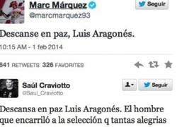 Enlace a El mundo del deporte de luto por la muerte de Luis Aragonés