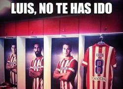 Enlace a Luis, no te has ido