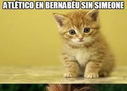 Enlace a Atlético en Bernabéu sin Simeone