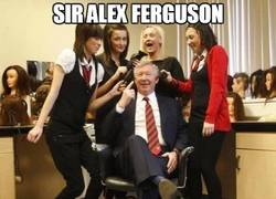 Enlace a Sir Alex Ferguson las vuelve locas