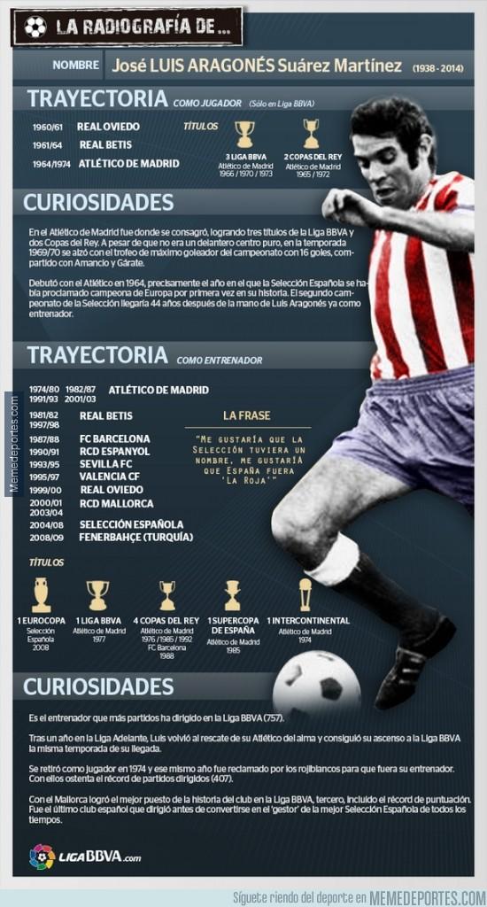 262684 - La radiografía de Luis Aragonés