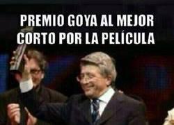 Enlace a Premio Goya del Atlético