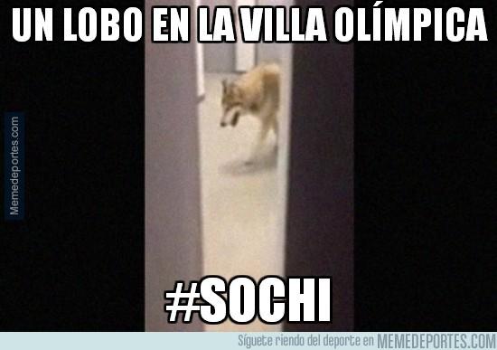 269754 - Un lobo en la villa olímpica