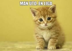 Enlace a El Manchester United en las diferentes competiciones