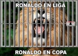 Enlace a Cristiano Ronaldo en las diferentes competiciones. ¡Imparable!