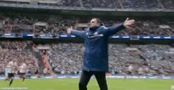 Enlace a GIF: Celebración de Gus Poyet tras el gol de Borini, poco le ha durado