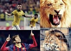 Enlace a Neymar con Brasil y con el Barça. ¿Cuál será la razón?