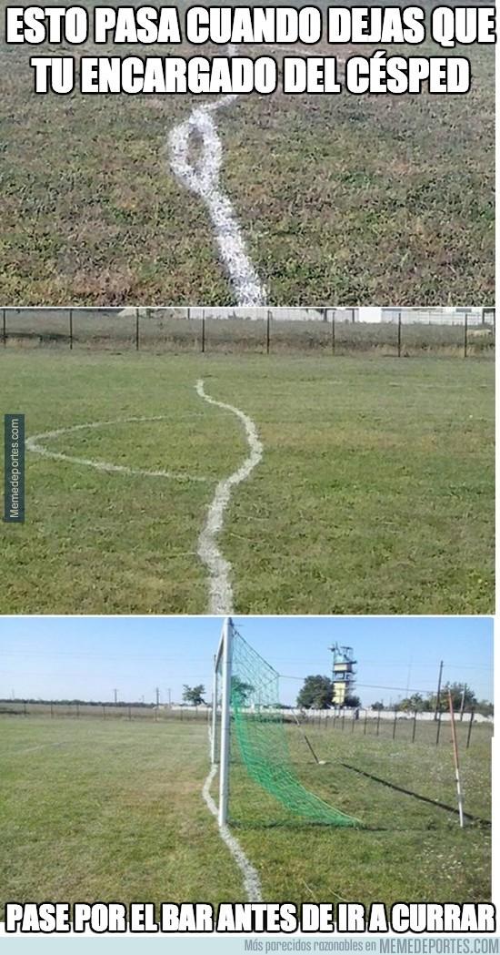 278109 - Las rectas líneas del campo