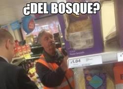Enlace a ¿Del Bosque? ¿Eres tú?