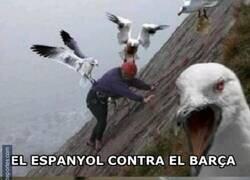 Enlace a Espanyol diferente frente a Barça y Real Madrid Via @forrest_tello