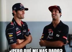 Enlace a La herencia de Webber para Ricciardo