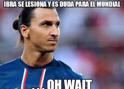 Enlace a ¡Atención! Zlatan es duda para el mundial