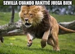 Enlace a Este Sevilla no es lo mismo sin Rakitić
