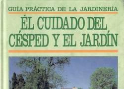 Enlace a Jardinería con Xavi Hernández