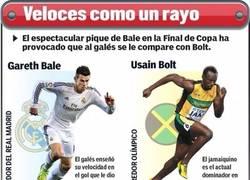 Enlace a Comparación entre Bale y Bolt