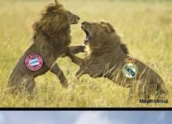 Enlace a Resumen de lo que pasará en las vueltas de Champions League