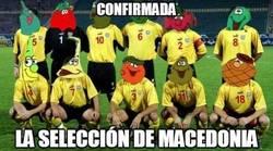 Enlace a Confirmada la selección de Macedonia