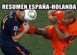 Enlace a Resumen España-Holanda